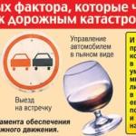 Виды и причины возникновения ДТП в России