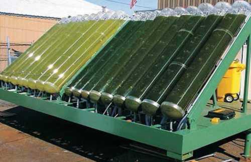 биотопливо третьего поколения