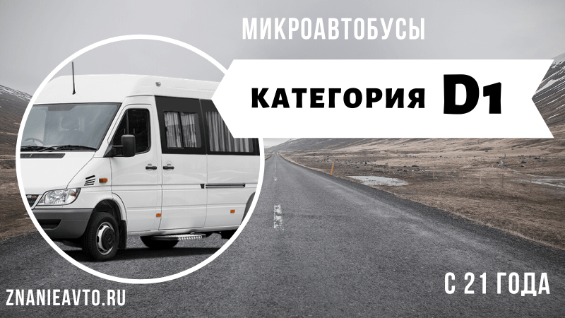 Микроавтобусы (D1)
